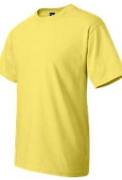 Hanes beefy t yellow honeoye NY Honeoye Valley Association lake quality